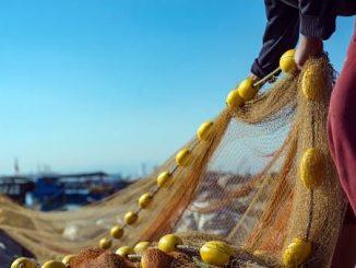 Publicadas las mejoras de las condiciones laborales para el sector pesquero,