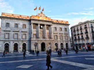Barcelona consigue reducir la población de palomas a la mitad con tratamiento anticonceptivo,