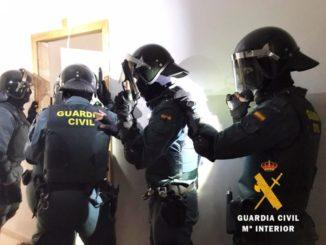 """Intervenidas más de 4.000 plantas de marihuana en un """"narco bloque"""" de Roquetas de Mar (Almería) que acogía peleas de gallos,"""