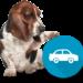 300 mil usuarios cotizan su seguro de coche en Rastreator.mx, país donde solo el 30% de autos tiene seguro