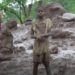 Desastre en Mozambique y Zimbabwe