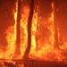 8.000 personas evacuadas y 3.400 hectáreas afectadas por incendio en Gran Canaria